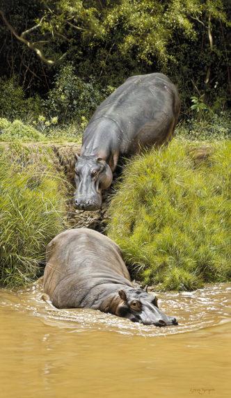 Mara River Horses