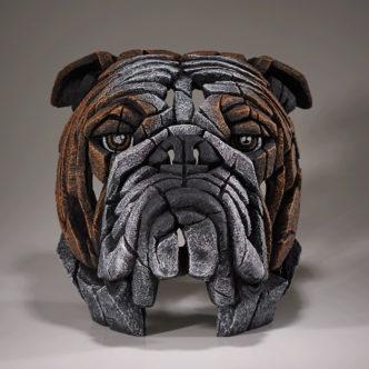 Bulldog Bust Fawn by Matt Buckley Edge Sculpture