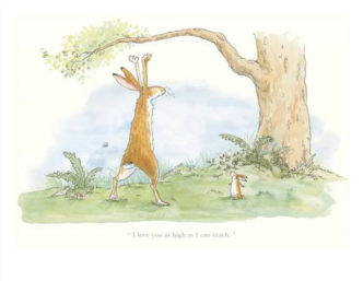 I Love You As High As I Can Reach by Anita Jeram