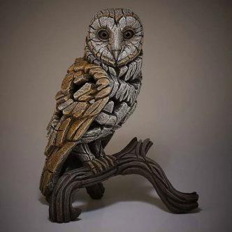 Barn Owl by Matt Buckley Matt Buckley