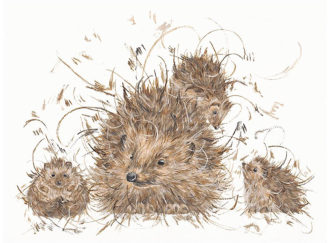 Hedgie & The Hoglets by Aaminah Snowdon