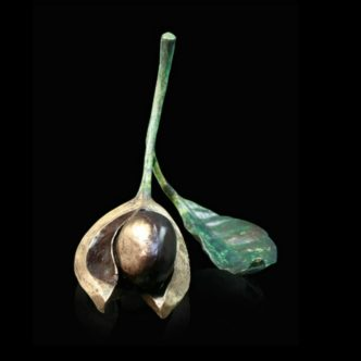 Single Conker with Leaf Solid Bronze Sculpture by Mike Simpson