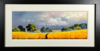 Fields of Gold (Original) by Allan Morgan