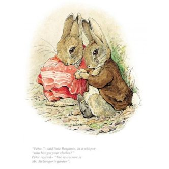 Beatrix Potter Peter Rabbit Who Has Got Your Clothes? Limited Edition Print