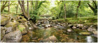 Shaugh Bridge - River Plym Dartmoor Plymouth Framed Print by Paul Haddon