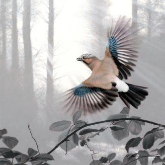 Jay - Taking Flight by Nigel Hemming