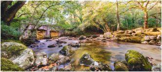 Paul Haddon Photography Where The River Flows Through Framed Print