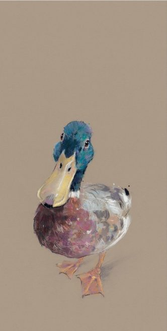 LORD LOVE A DUCK by Nicky Litchfield Duck Print