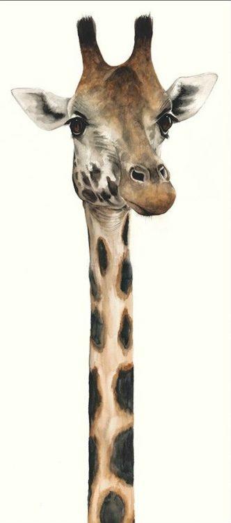 Tall, Dappled and Handsome by Dominique Salm giraffe print fine art