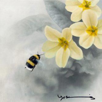 Primrose - White Tail Bee by Nigel Hemming