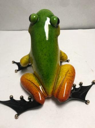 Ferguson Frogman Tim Cotterill